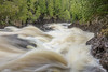 """RIVERS 03812<br /> <br /> """"Spring Rush""""<br /> <br /> Cascade River - Cook County, MN"""