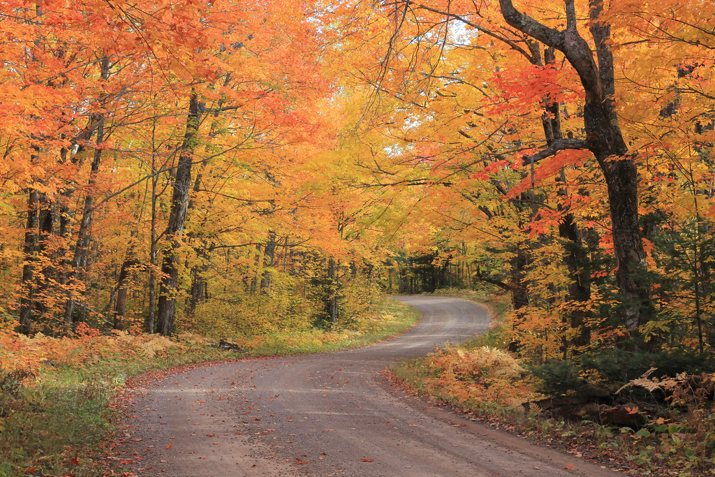 "AUTUMN 3180<br /> <br /> ""Honeymoon Trail, Northeast Minnesota"""
