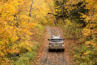 "AUTUMN 01661  ""Fall Color Drive""  Grand Portage, MN"