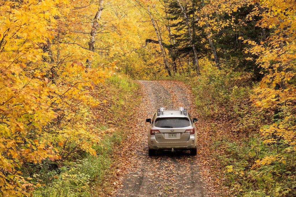 """AUTUMN 01661<br /> <br /> """"Fall Color Drive""""<br /> <br /> Grand Portage, MN"""