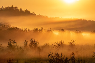 """August Morning Fog"""