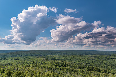 "FOREST 9546  ""Cloud Gazing on Carlton Peak""  Superior National Forest near Tofte, MN"