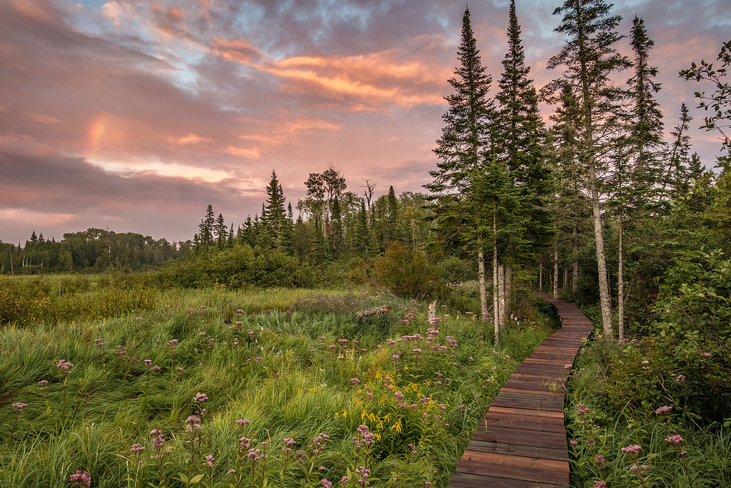 """FOREST 01955<br /> <br /> """"Sunset on the Beaver Meadow""""<br /> <br /> Grand Portage Trail - Grand Portage National Monument, MN"""