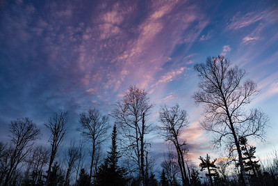 """FOREST 01345  """"Winter Sunset off Cowboy's Road""""  Grand Portage, MN"""