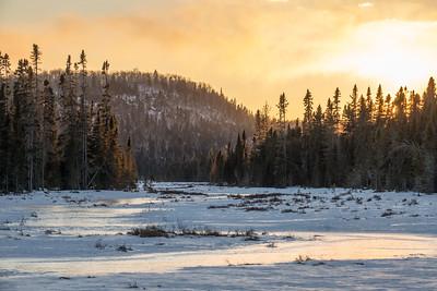 "FOREST 01802  ""March Sunset, Northeast Minnesota Bog""  Grand Portage, MN"