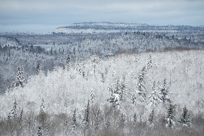 "FOREST 07126  ""Frosted Forest""  Grand Portage, MN - An early snow storm blanketed northern Minnesota with as much as 8 to 12 inches of wet snow on October 28, 2017.  The scenery after the storm was unbelievably beautiful!"