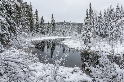 "RIVERS 07177  ""Winter Wonderland (In October!)""  October 28, 2017 - Grand Portage State Forest, MN"