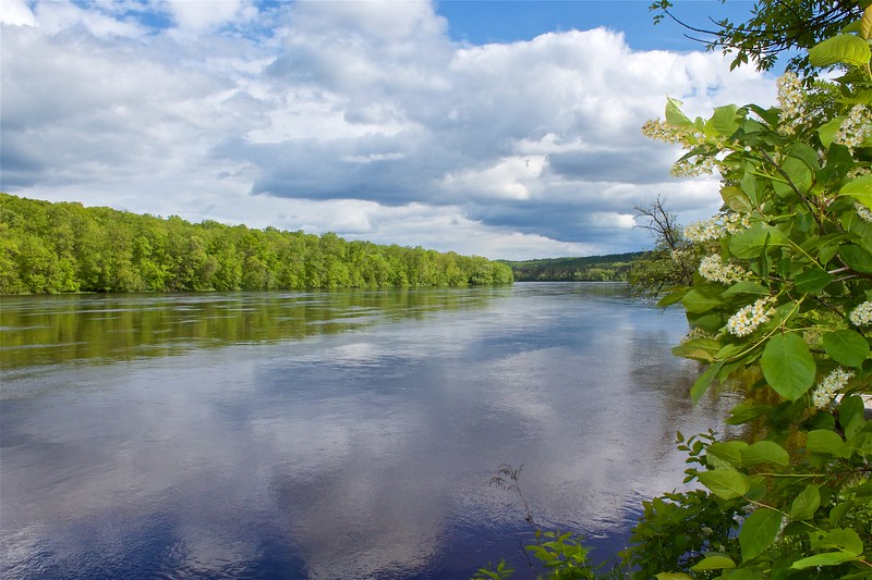 St. Croix River from old Nevers Dam  Wild River State Park