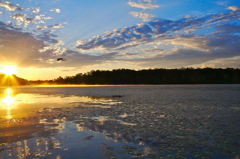Sunrise Rock Lake St. Croix State Forest Minnesota.
