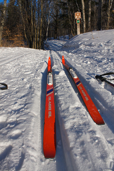 Cross Country skiing at Mille Lacs Kathio State Park MN.