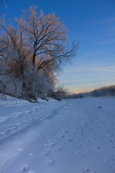 A frosty sunrise. If you look to the right you will see the steam rising off the open water of the Mississippi River. That steam slowly drifted over to and coated the trees to the left.