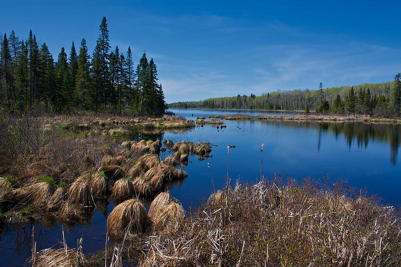 Sullivan Lake Finland State Forest MN.