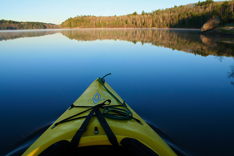 This is a hard shot... you got to paddle... then quick put down the paddle ...pull out your camera and  take a fast shot.