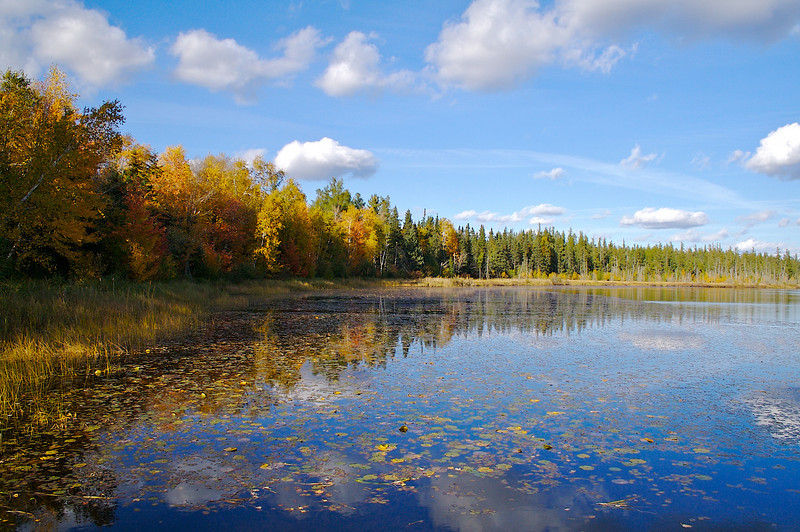 Pickerel Lake Nemadji State Forest Minnesota