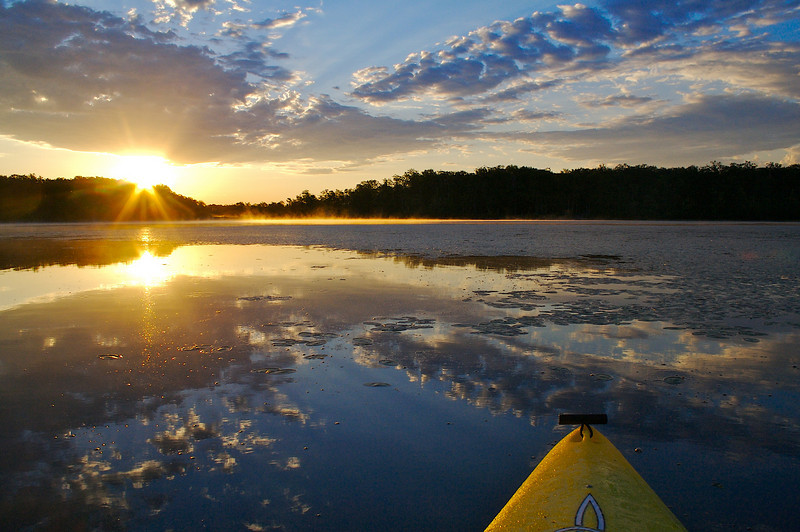 Sunrise from the kayak on a forest lake.