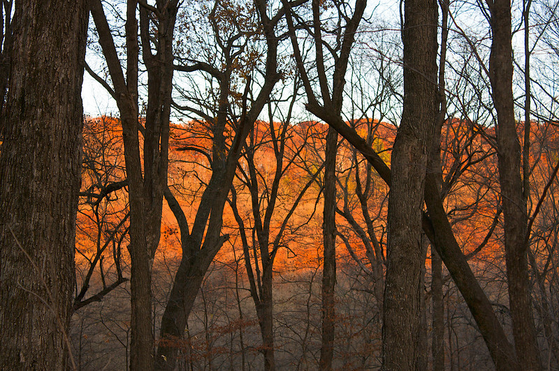 Sunset.. Forestville/Mystery Cave State Park Mn.