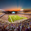 Minnesota Vikings at TCF Bank Stadium