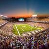 Minnesota Vikings at TCF Bank Stadium
