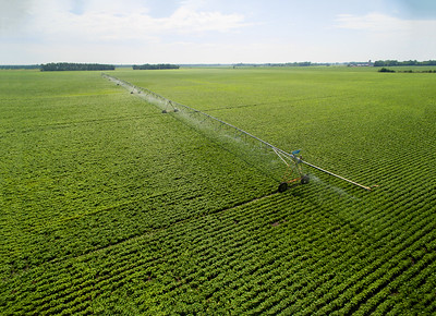 Biosystems and Ag. Eng. -- Irrigation and drainage