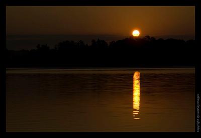 075 Sunrise above Treetops