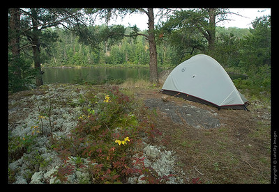 261 Secluded Campsite