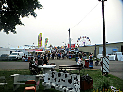 Thursday at the fair (photos & video) By Lowell Anderson on Aug 17, 2018 at 12:57 p.m. http://www.echopress.com/community/events/4486512-thursday-fair-photos-video The Douglas County Fair in Alexandria starts Thursday morning and runs through Sunday evening. Check back throughout the day for more photos and video. Click right and left arrows on the sides of the photo to see more photos.  https://www.instagram.com/p/BnAEtmEl8ax/?taken-by=goodnewsminnesota