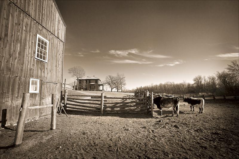 <font size=+2>Quiet Afternoon</font>  Oliver H. Kelley Farm Minnesota Historical Society Elk River, Minnesota <font size=-2>(5-11144)</font>