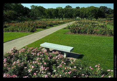177 Rose Garden