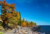 Fall foliage color along the north shore of Lake Superior, Minnesota, USA.