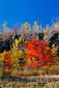 Fall foliage color in the hills along the north shore of Lake Superior, Minnesota, USA.