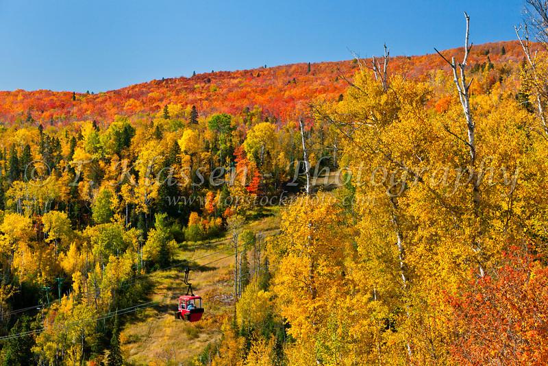 Fall foliage color in the Lutsen Mountains near the Lutsen Mountain Resort, Minnesota, USA.