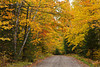 A road through the colorful deciduous forests of northern Minnesota in the autumn season.