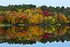 Fall foliage color reflected in a lake near Grand Rapids, Minnesota, USA.