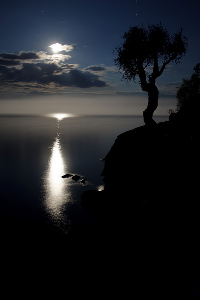 Spirit Little Cedar Tree Moon Glow<br /> <br /> Grand Portage, Minnesota<br /> (5II-01284)