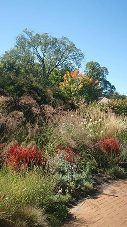Noerenberg Gardens-September 2010