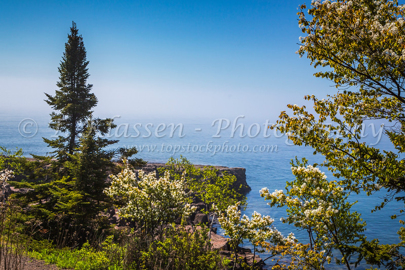Spring blossoms and the north shore of Lake Superior near Two Harbors, Minnesota, USA.