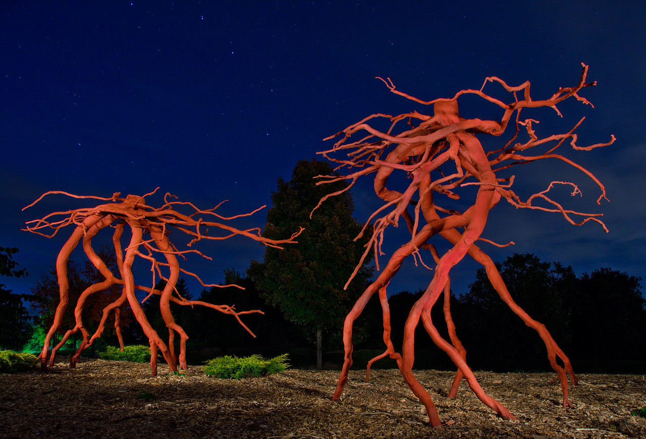 Steelroots Romeo & Juliet are illuminated by handheld spotlight under a starry sky---Arb-2031