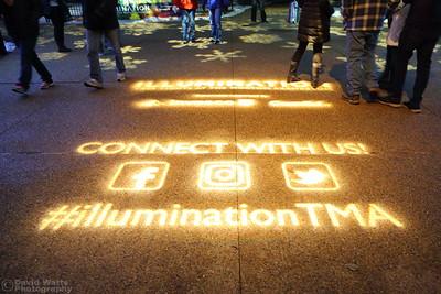 Illuminating - Morton Arboretum Illumination 2019