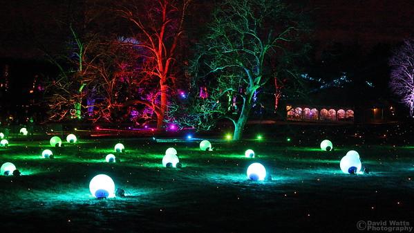 Orb Grove 2 - Morton Arboretum Illumination 2019