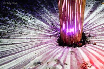 Bamboo Starburst - Morton Arboretum Illumination 2019