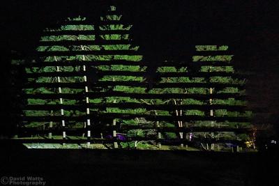 Horizontal Hold - Morton Arboretum Illumination 2019