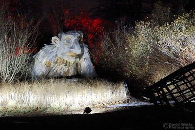 Night Troll - Morton Arboretum Illumination 2019