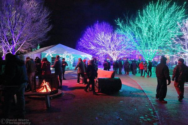 The End - Morton Arboretum Illumination 2019