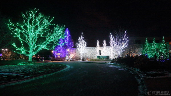 Visitor Center - Morton Arboretum Illumination 2019