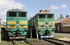2TE116 1100 & 2TE116 1172 at Pologi Depot on 7th May 2010 (4)