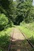 In woods near Nassenwil on old line between Niederglatt and Otelfingen on 19th June 2006