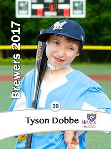 ML2017Tyson Dobbe Brewers