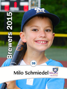 ML2015BrewersMiloSchmiedel