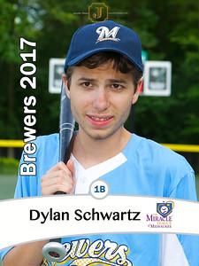 ML2017BrewersDylanSchwartz
