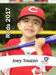 ML2017Reds JoeyTouzzo